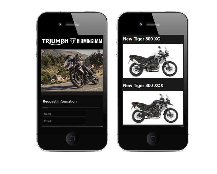 web design for triumph dealers